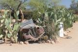 IMG_1931 Kalahari